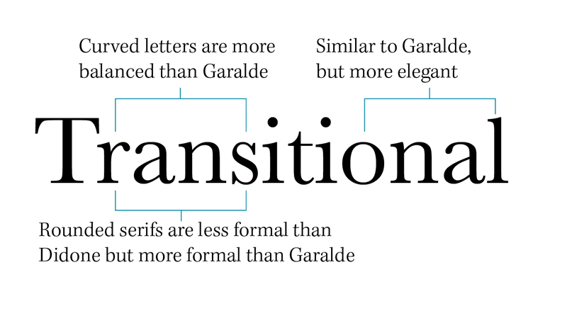 Transitional type sample diagram
